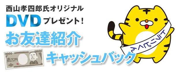 DVDプレゼント、友達紹介、1万円キャッシュバック
